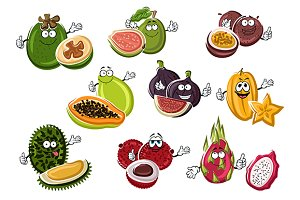Ripe exotic asian fruits characters