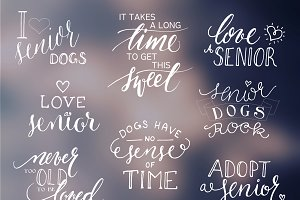 Words Overlays-Senior Dog Support