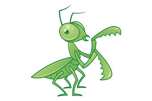 Praying Mantis Cartoon Character