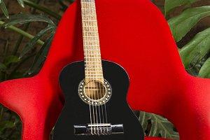 Black acoustic