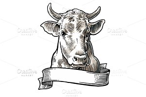 Cows head. Hand drawn engraving