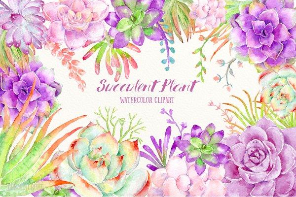 Watercolor Clip Art Succulent Plant