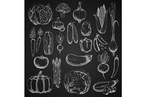 Chalk sketches of farm vegetables