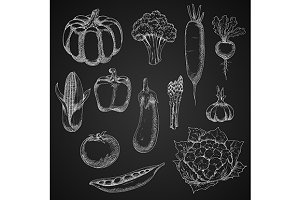 Chalk sketches of fresh vegetables