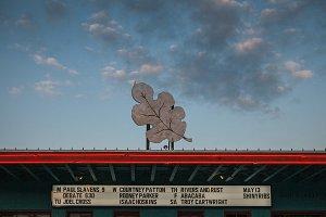 Dan's Silverleaf in Denton, Texas