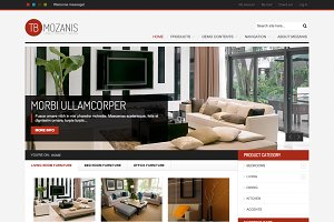 Ecommerce Drupal Themes TB Mozanis