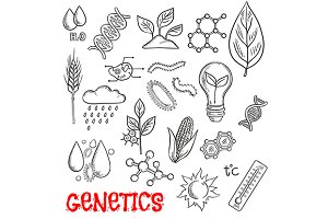 Agriculture and genetic sketches