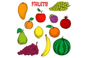 Colored sketches of fruits