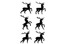 Wild forest bull elks or deers