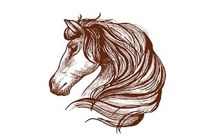 Graceful horse engraving sketch