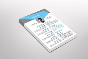 Bonxio Resume Template