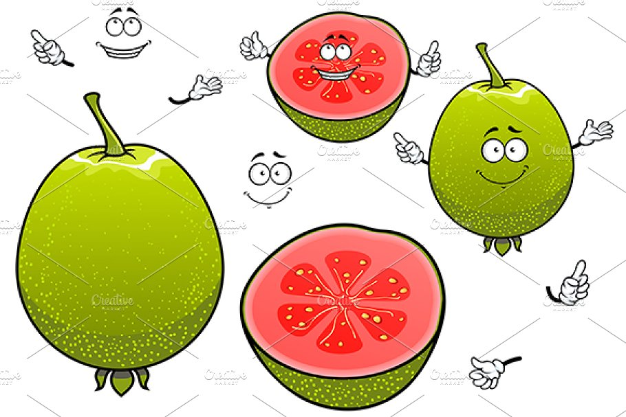 Mexican green guava fruit