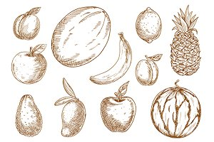 Sketched fruits set
