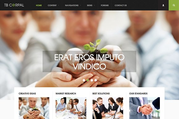 Business Drupal Theme TB Corpal