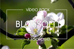 7 video of blossom