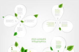 Paper Leaves Infographic