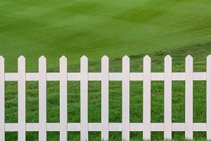 Lawn and fence