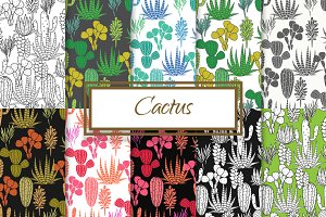 Cactus and Agave Patterns