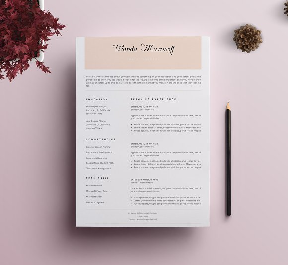 Professional ResumeCV Template 9 Resume Templates on Creative – Professional Resume Cv Template