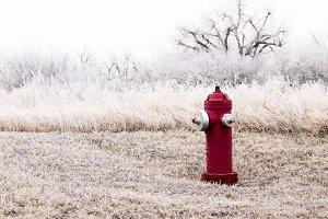 Winter Fire Hydrant