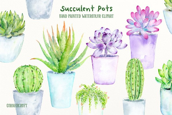 Watercolor Succulent Pots