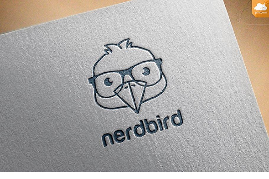 Nerd bird