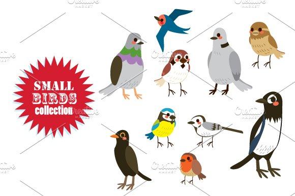 Small Birds Collection Set