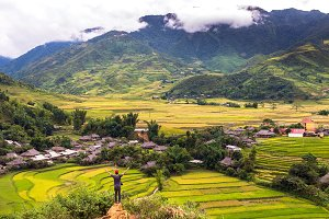 Traveler at Rice fields on terraced