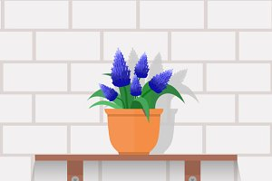 Set Houseplant