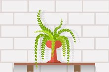 Set of Houseplant