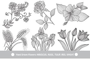 Hand Drawn Decorative Flowers (4)