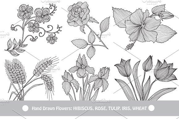 Hand Drawn Decorative Flowers (4)
