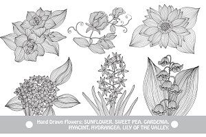 Hand Drawn Decorative Flowers (5)