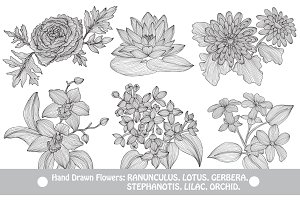 Hand Drawn Decorative Flowers (6)