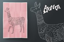Lama. Coloring book for adult