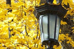 Park lantern