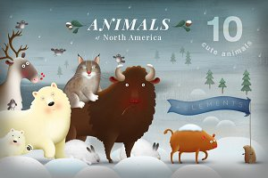 Animals of North America bundle