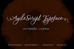 Agile Script Extended License