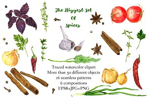 The biggest watercolor set of spices