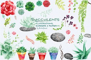 Succulents- patterns & illustrations