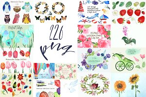 226 PNG Watercolor Bundle