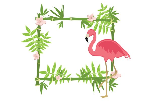Exotic tropical frame