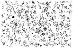 Doodle art. Nature elements set.