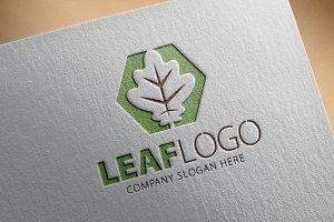Leaf Logo/3