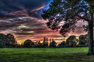 Sunset in a London Park