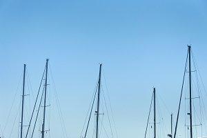 Many Masts