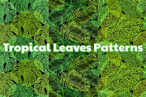 TROPICAL Leaves Patterns