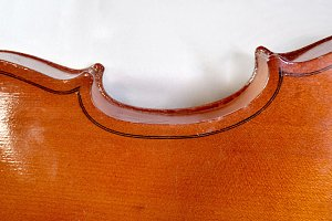 violin back side