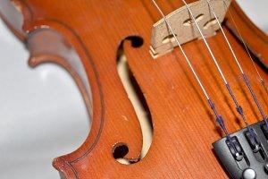 violin, front