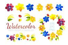Watercolor Flowers Set. EPS,JPG,PNG